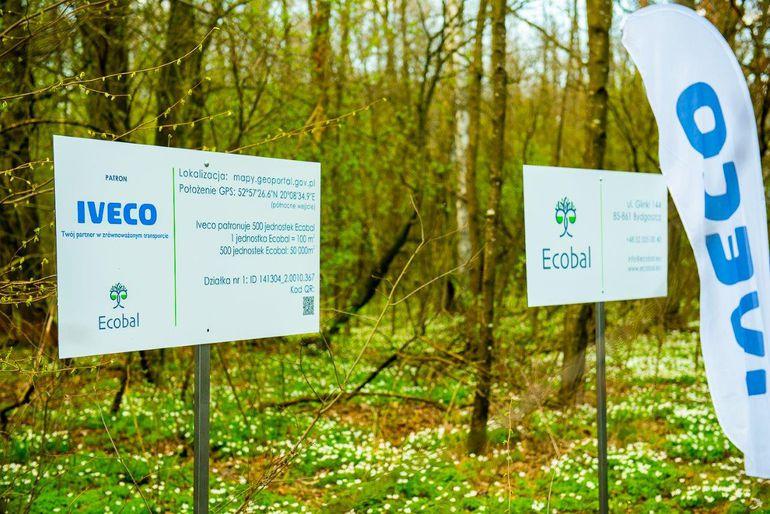 Producent ciężarówek będzie w Polsce... sadzić lasy